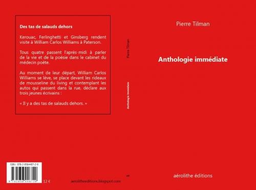 Couverture-Pierre-Tilman-aerolithe-3.jpg