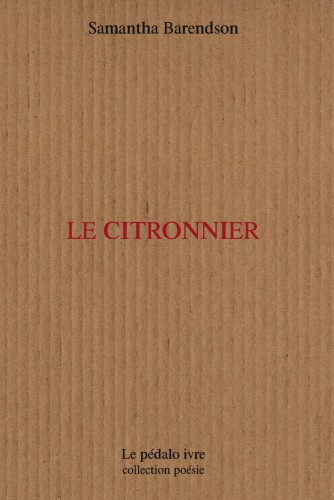 Citronnier_h.jpg